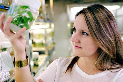 La phytogénétique, passion d'une jeune chercheuse